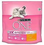 Purina One Croquettes Chat Junior 1 à 12 Mois Poulet 1,5Kg (lot de 3)