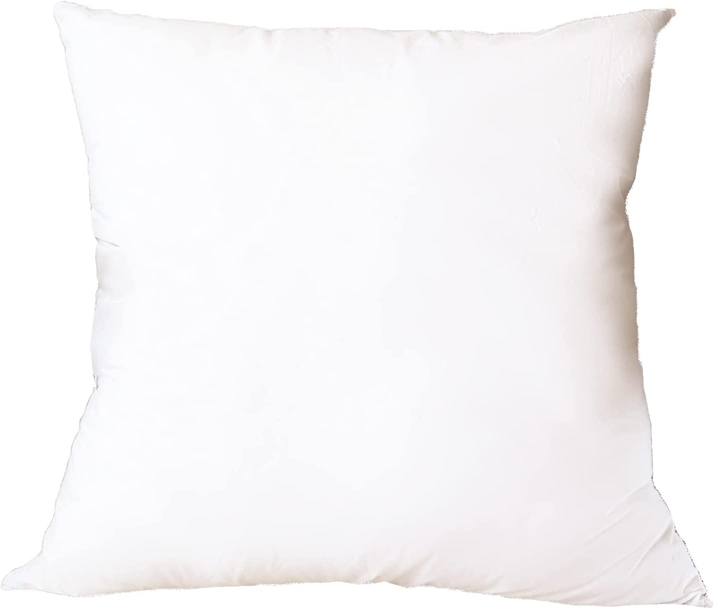 SORBARIA Down Alternative Throw Sale SALE% OFF Pillow for 22 Max 67% OFF fit White Insert