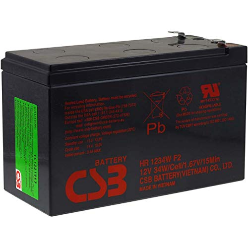 CSB Batteria al Piombo di Alta Scarico HR1234WF212V 9Ah