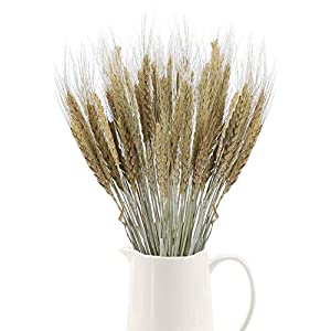 XHXSTORE 100Pcs Natural Drid Flowers Dry Wheat Grass Bouquet Dried Wheat Grass Bundle Artificial Wheat Dried Flowers for Fireplace Home Kitchen Church Table Wedding Christmas Wreath Decoration