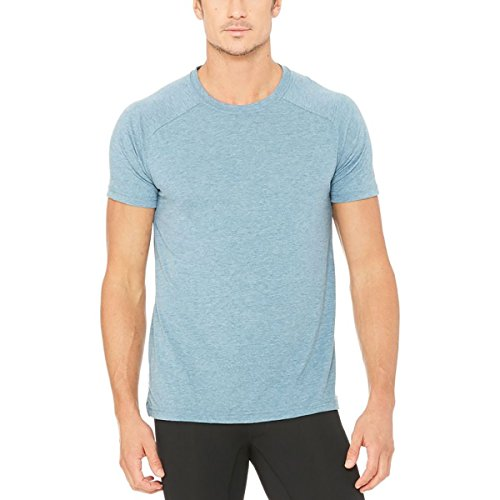 Alo Yoga Men's The Triumph Crew Neck Tee, Denim Triblend, Small