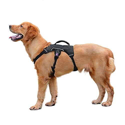 PETLOFT Hundegeschirr, Verstellbar Geschirr für Kleine Mittlere Hunde Brustgeschirr, Weiche Textur Reflektierende Dog Harness mit Edelstahlringen, No-Pull & Einfache Steuerung (L, Schwarz)