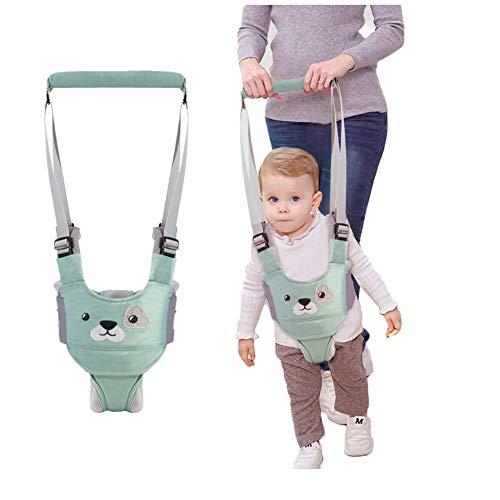 Lauflernhilfe Gehhilfe für Baby Stehen Gehen Lernen Helfer Walker Sicherheitsleinen für Kinder 6-27 Monthe Baby Kleinkind Kind Kinde (Grün)【Neue Version】