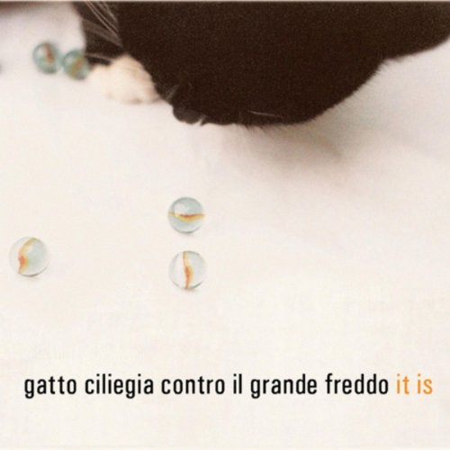 La Sequenza Del Fiore Di Carta By Gatto Ciliegia Contro Il Grande
