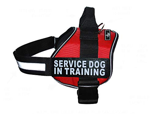 Doggie Stylz Service Dog in Training Vest with Hook and Loop Straps and Handle – Harness Comes in Sizes XXS to XXL – Three Colors – Dog Harness Features 2 Reflective Patches (Girth 28-38