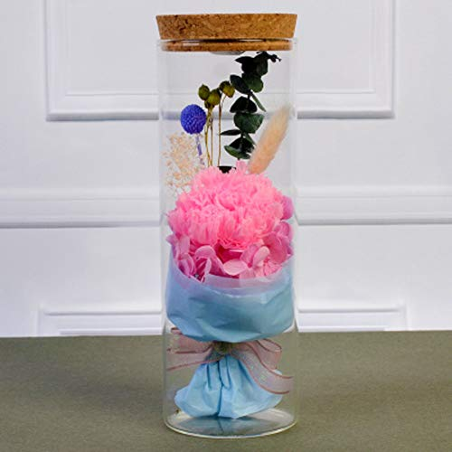 GE&YOBBY handgemaakte bewaring rozen, fris handwerk met led-licht decoratie nog nooit gedorrerde rozenbloesems in glazen pot cadeau voor Valentijnsdag Valentijnsdag