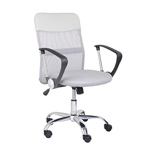 GOLDFAN Mesh Computer Desk Chair Office Chair High Back Swivel Chair with Height Adjustment, Armrest and Ergonomic Lumbar Support (Grey, 1)