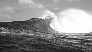 YYAYA.DS Rough waves sea Tahiti French Polynesia - Art Print Silk Fabric Cloth Wall Poster Print 42x24 Inches Black and White