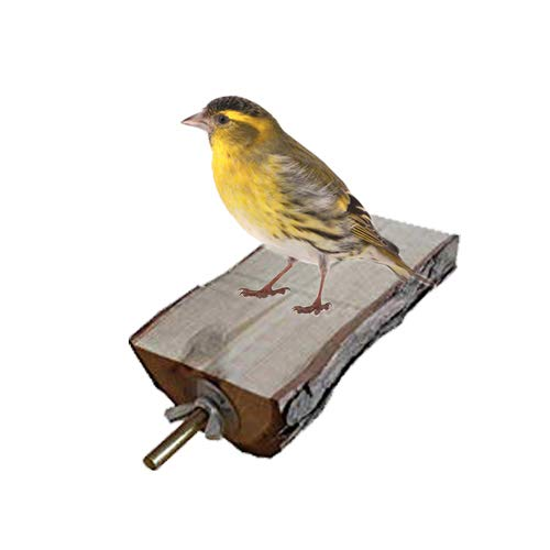 5 piezas de juguete de plataforma de percha para pájaros, de madera natural, juguete de ejercicios de molienda, accesorios de jaula para periquitos, periquito, rata gerbil
