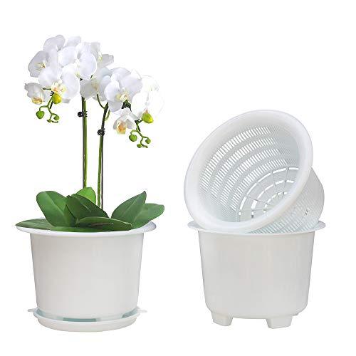 Meshpot - Macetero de plástico para orquídeas con agujeros y platos, 20 cm, 2 macetas interiores, 2 macetas exteriores y 2 platos.