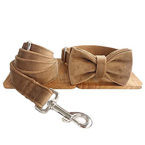 Gymy Cómodo perro pluma engrosamiento cuerda de tracción durable moda perro pluma tracción cuerda conjunto, S