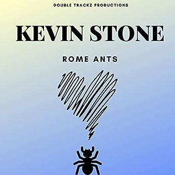 Rome Ants