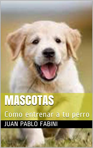 Mascotas: Como entrenar a tu perro 2