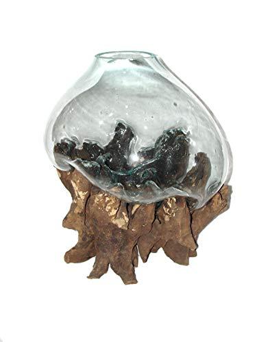 SAWA Glasvase Bodenvase 50 cm auf Wurzelholz spezielle Vase mit Holz Wurzel