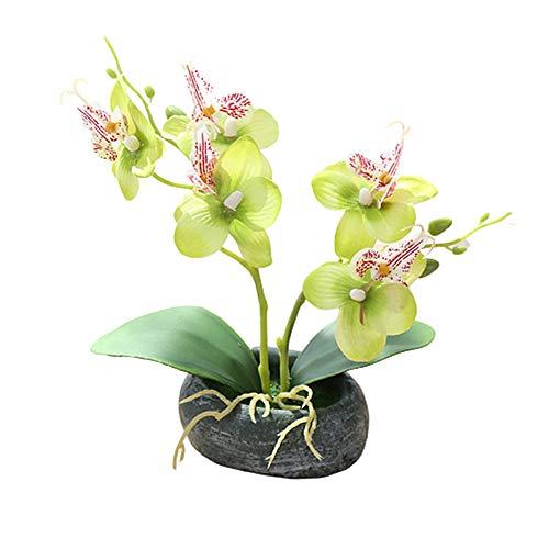 BOENTA Artificial Orchid Orchid Plant Indoor Plant Pots House Plant Houseplant Indoor Plant House Plants Indoor green