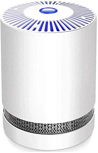 Buy YLSP Air Purifiers for Home and Pet Hair Allergies, Smokers, True HEPA Filters, Bedroom Mute Fil...