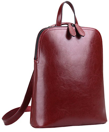 Heshe Women's Leather Backpack Casual Daypack for Ladies (Wine-r)