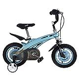 WFDA Bicicleta de Ejercicio Bicicleta Deportiva con estabilizador en tamaño Pulgada 12 14 Edad 3+ Niño Niño Chica Bicicleta Estilo Libre Plegable de Fitness (Color : Blue, Size : 14 Inch(90-110cm))