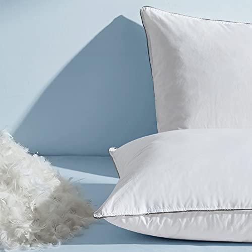 Top 10 Best down pillows for sleeping 2 pack Reviews