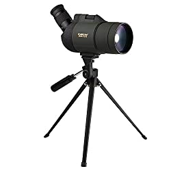 Best Spotting Scopes for the Money Reviews