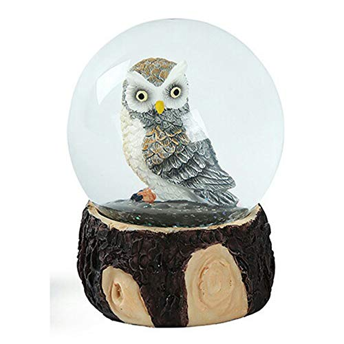 SURPRIZON Owl Snow Globe Home Decor, Best Gifts of Brithday Christmas for Kids, Girls, Boys, Silver