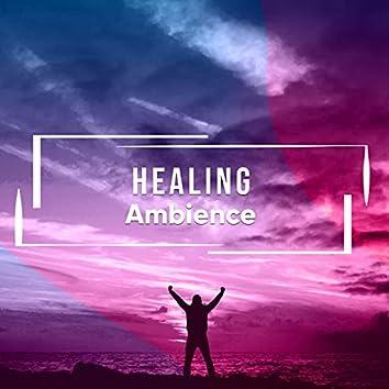 # 1 Album: Healing Ambience