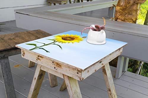 Wallario Aufkleber Selbstklebende Garten-Tisch-Decke - Sonnenblume mit Schmetterling in 60 x 60 cm