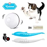 HEIHEI Smart Interactive Cat Toy, USB Rechargeable 360 Automatic Spin Ball with Led Light, Fish Shape Teeth Cleaning and Stimulate Hunting Instinct for Your Kitty with 2 Catnip Toys