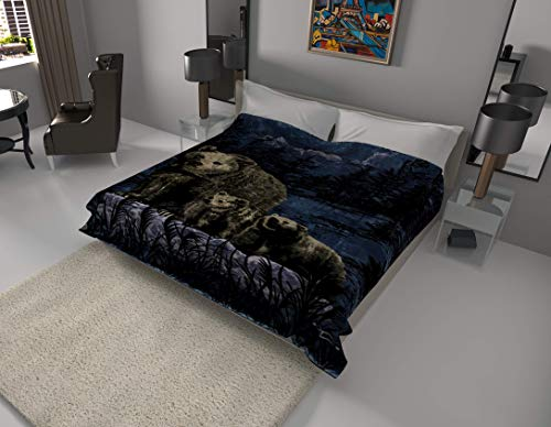 SOLARON Korean Super Thick Heavy Weight Mink Blanket (King, Bear and Cubs Blue)
