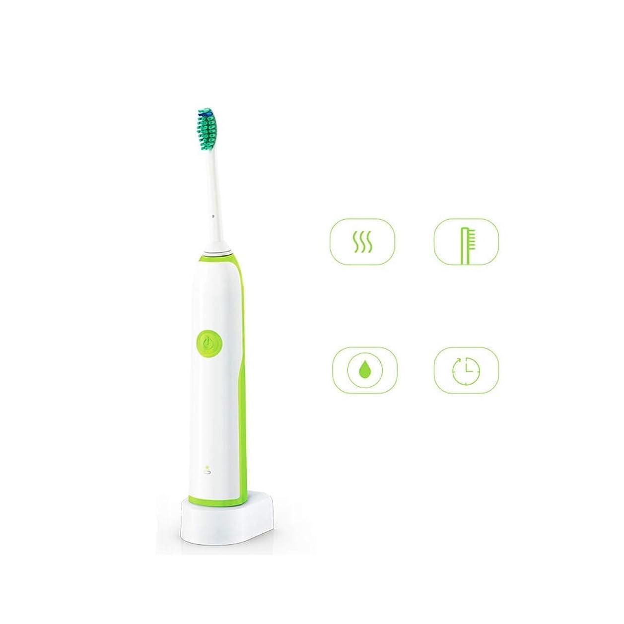 簿記係ドラッグ副電動歯ブラシ 軽度で刺激のない電子歯ブラシ3Dプロフェッショナルデュポンブラシスマートソニック歯ブラシ (色 : 緑)