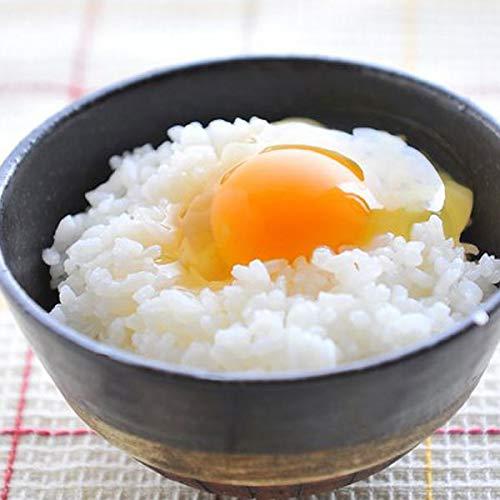 卵 30個入 朝どり たまご タマゴ 福岡産 割れ保証一割3個含む