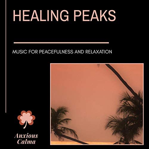 Liquid Ambiance, Ambient 11, Healed Terra, Serenity Calls, Moist Soul, Siddhi Mantra, Cleanse & Heal, The Inner Chord, Sapta Chakras, Yogsutra Relaxation Co, Satya Yuga, Sanct Devotional Club, Mystical Guide, Space Junk, Sampoorana Ananda, Forest Therapy & Prime Tee