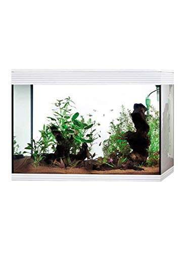 Askoll Aa350073 Aquarium Pure LED XL, weiß