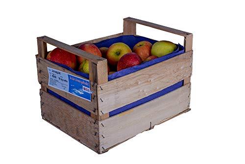 Jonagold Äpfel 10 kg Orginalkiste / Spitzenqualität süßlich, Ernte 2019