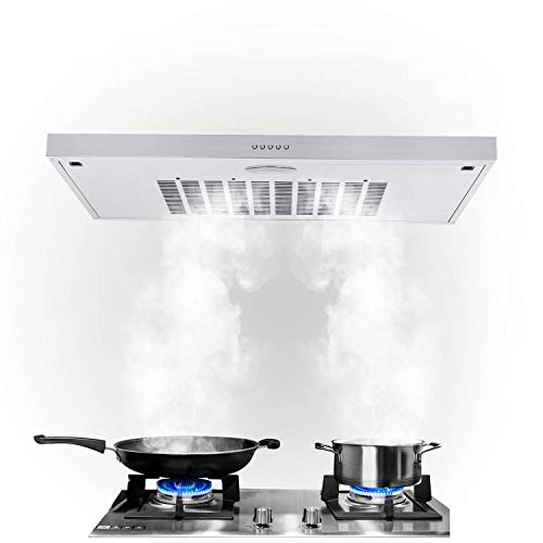Range Hood,Under Cabinet 30 inch Range Hood in Stainless Steel,Ducted/Ductless Convertible Slim Kitchen Over Stove Vent with Light,205 CFM,3 Speed Exhaust Fan