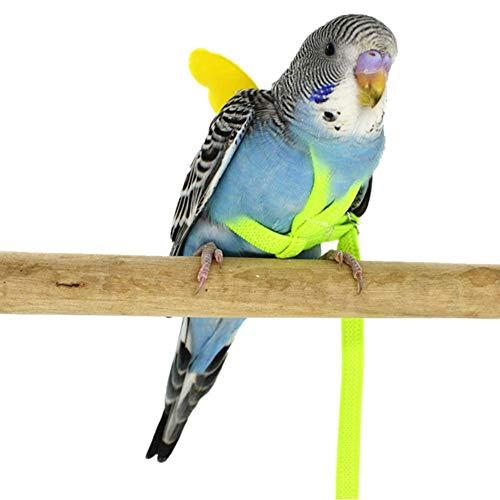 Ritapreaty Vogelgeschirr Leine, verstellbare Pet Papagei, Anti-Biss-Flugtraining Seil, Haustier Traktion im Freien, Fit Lovebird Nymphensittich Mynah Kleiner Vogel
