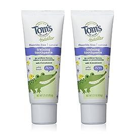 Tom's of Maine Flouride Free Children's Toothpaste, Mild Fruit Flavor – 1.75 oz – 2 pk