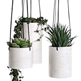 Hanging Planter for Indoor Plants - Set of 3 Ceramic Hanger Planters Succulent...