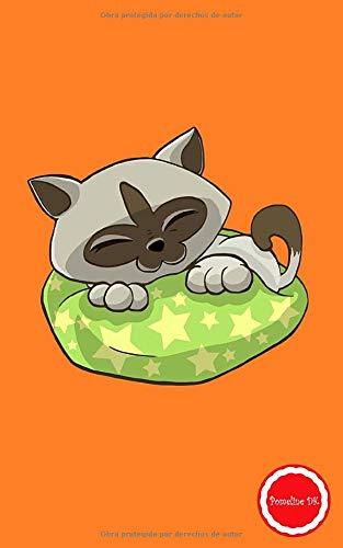 Pomeline DK: Cataline Cuaderno de notas A5 pequeño tapa blanda de rayas libreta de viaje vintage diario para escribir idea de regalo cumpleaños fiesta ... los gatos gatito mascota hombres mujer niños