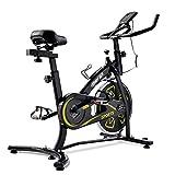 T-Day Bicicleta Estáticas Bicicleta Interior De Bicicleta De Ejercicios con Consola LCD/Asiento Ajustable/Manillar Bicicleta De Aptitud para Entrenamiento Cardio
