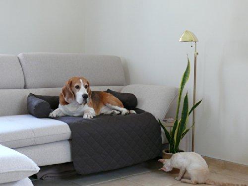 Artur Soja LEOS Sofaschutz Hundebett Couch Hundematte Größen: S-XL (XL - 140x110cm, Schwarz)