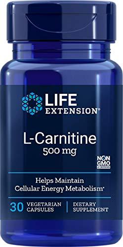 l carnitine 500mg life extension