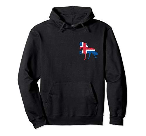 Islandpferde Geschenk Kinder Damen Islandflagge Mädchen Pullover Hoodie
