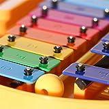 Immagine 1 ffalstaff metallofono 25 piastre multicolor