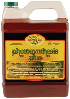 Best microbe life photosynthesis plus Reviews