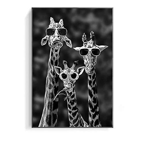 Domrx Divertida Familia de Jirafas con Gafas de Sol, pósteres e Impresiones de Pintura en Lienzo con Animales en Blanco y Negro, Cuadros artísticos decoración 60 x 90 cm / 23,6 x 35,4 Marco Interior