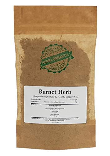 Großer Wiesenknopf Kraut / Sanguisorba Officinalis L / Burnet Herb # Herba Organica # Groß-Wiesenknopf (50g)