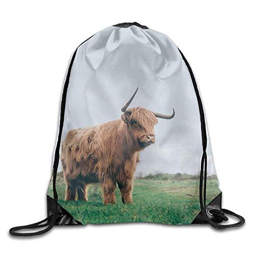 NA Brown Yak-Nature-Meadow Funny Gym Drawstring Bags Travel Backpack Tote School Rucksack