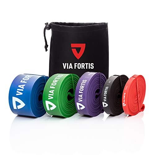 VIA FORTIS Resistance Bands für Fitness & Krafttraining/Klimmzugband und Klimmzughilfe mit Tasche und Übungsanleitung/Fitnessband Widerstandsband/Fitnessbänder Widerstandsbänder