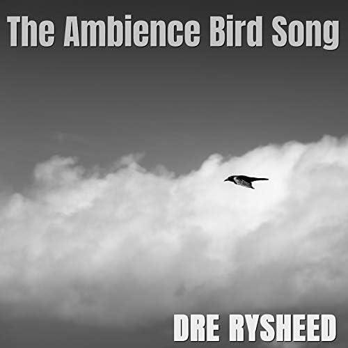 Dre Rysheed
